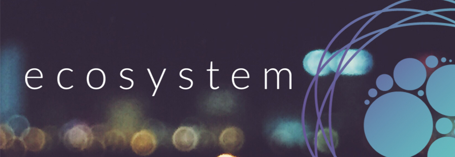 Ecosystem-banner-for-web11